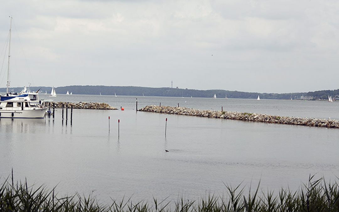 Steinfischerei – Raubbau an der Unterwasserwelt